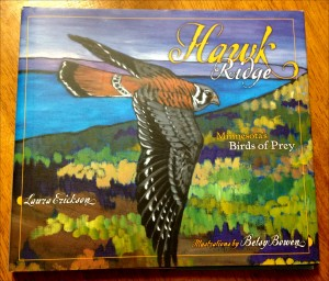 Book cover for Hawk Ridge: Minnesota's Birds of Prey