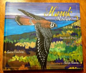 Book cover for Hawk Ridge: Minnesota's Birds of Prey